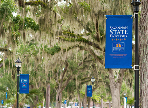 Blue Savannah State University banner attached to a lamppost in front of spanish moss filled trees.